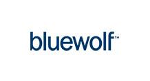 bluewolf mini